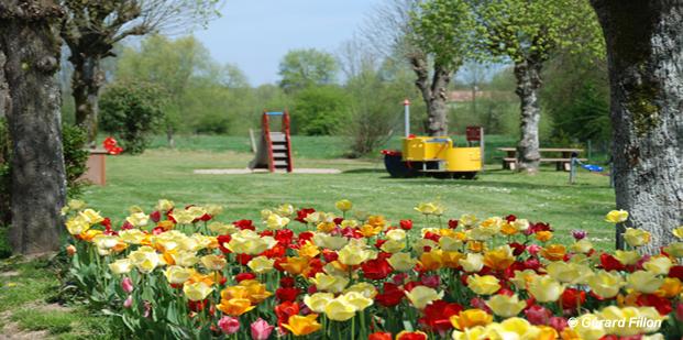 slide_fleurs